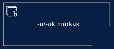 Norbaiti izen arruntaz zuzentzeko, -a/-ak markak, ez ori/-ok markak