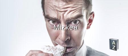 Hiztegia 13: Mizkea