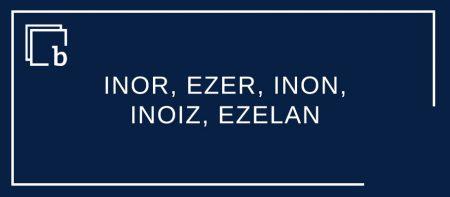 INOR, EZER, INON, INOIZ, EZELAN E-/I- aurrizkidun izenordain eta adberbioen eremua