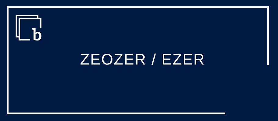 """""""Zuri ZEOZER/EZER pasetea izan ezkero, badakizu zer izango litzateken guretzat?"""""""